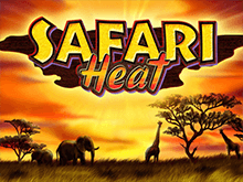 В казино Вулкан Делюкс автомат Safari Heat